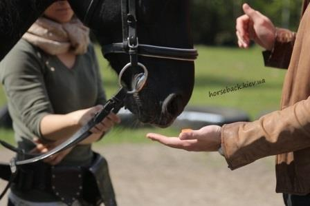 Benefits of horse riding kiev